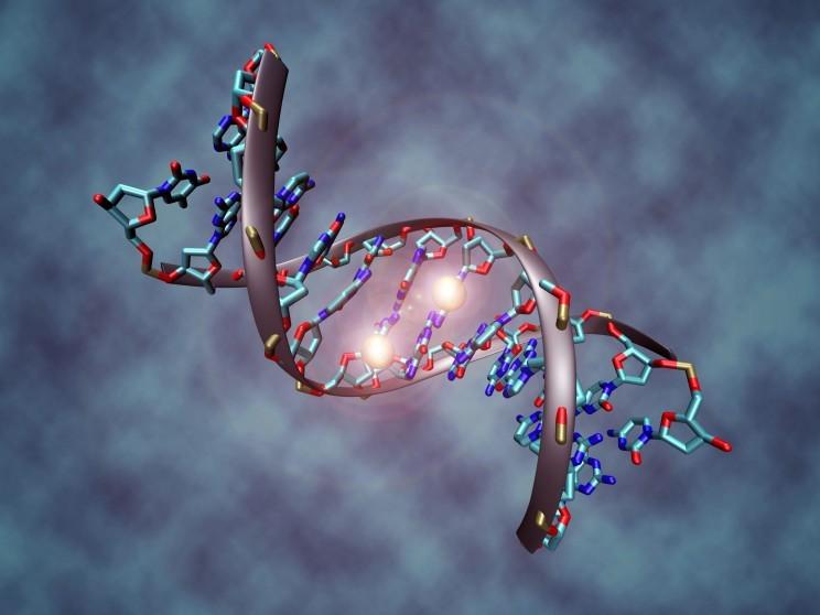 Редактирование генов – новый тренд в генной инженерии